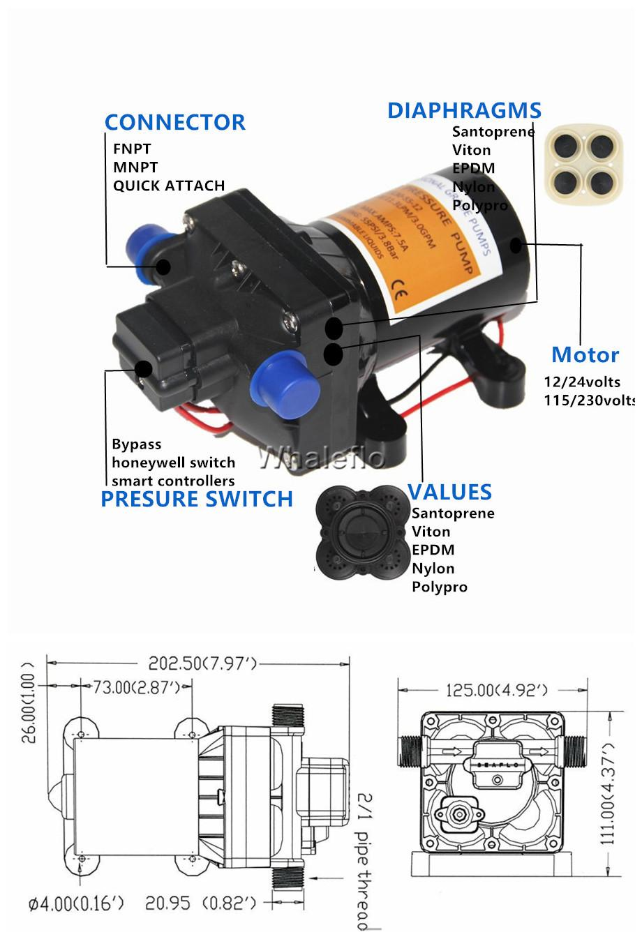 55psi 12V DC pump